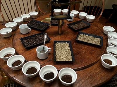 Cupping Protocols