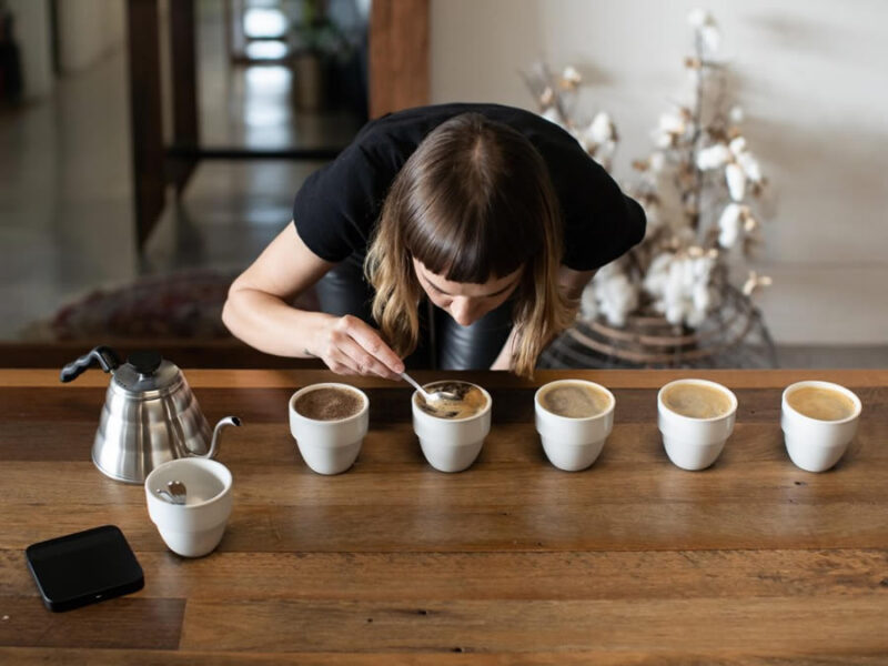 A Look at the State of Cupping